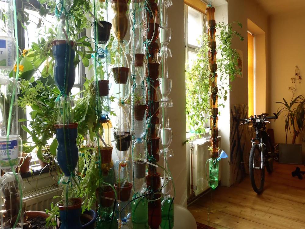 Jardinage d'intérieur, windowfarm, fenêtre maraîchère