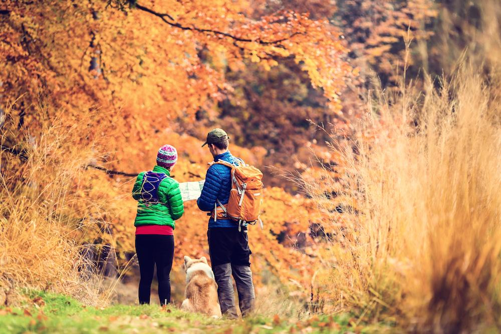 randonnée, plain air, automne, jerky, viande séchée, repas