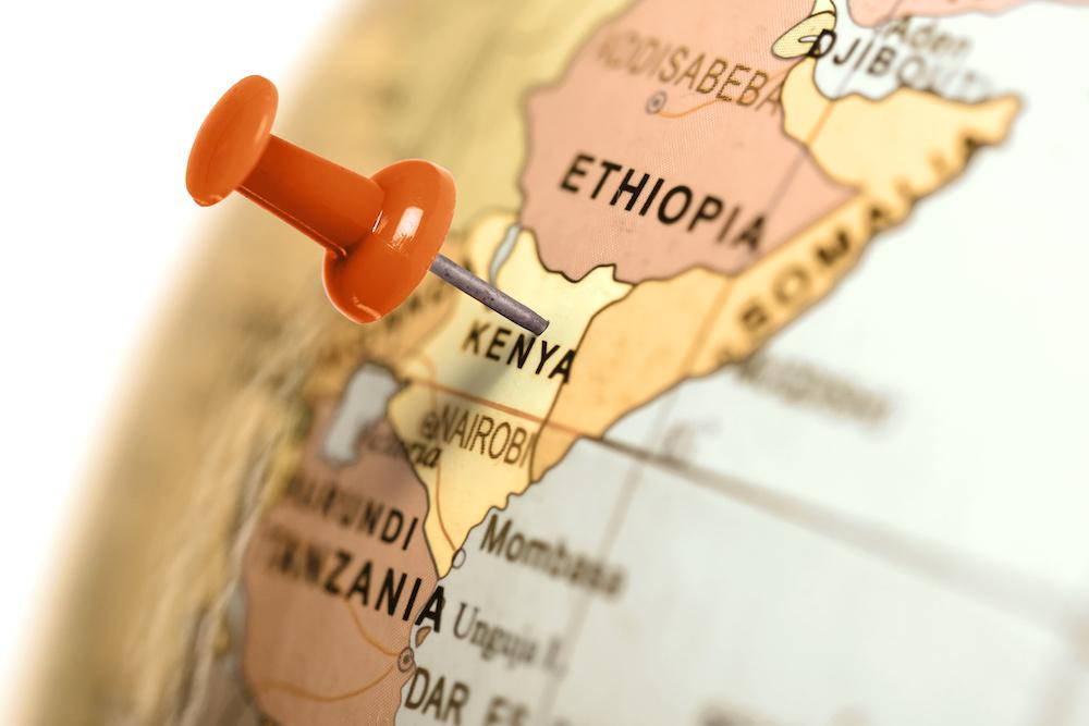 Kenya, thé, thé noir, producteur, Afrique