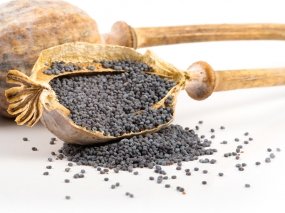 graines de pavot, épice