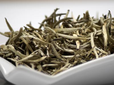 thé blanc, thé, blanc, épine d'argent