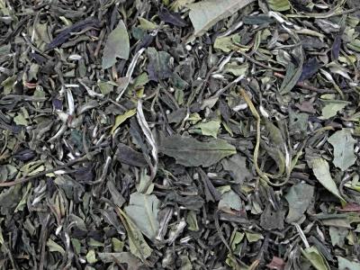 thé blanc, thé, pêche, abricot