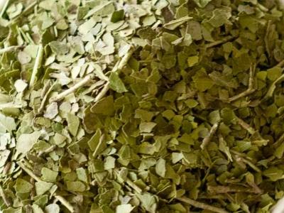 Yaupon, vert, thé
